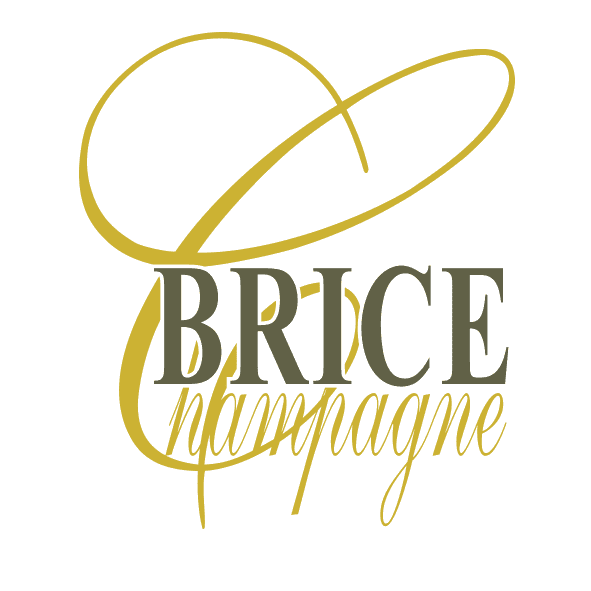 brice-logo